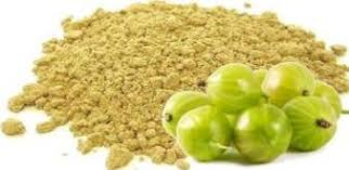 INDIAN HERITAGE AMLA POWDER 100G